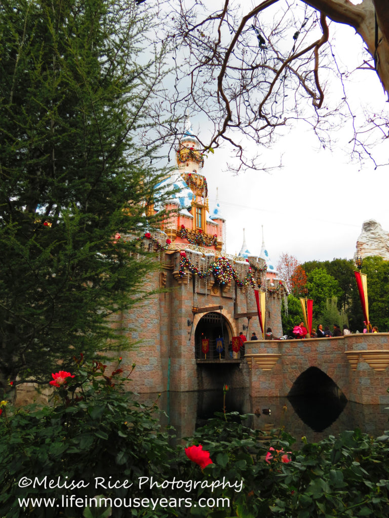 Sleeping Beauty's Castle with roses.