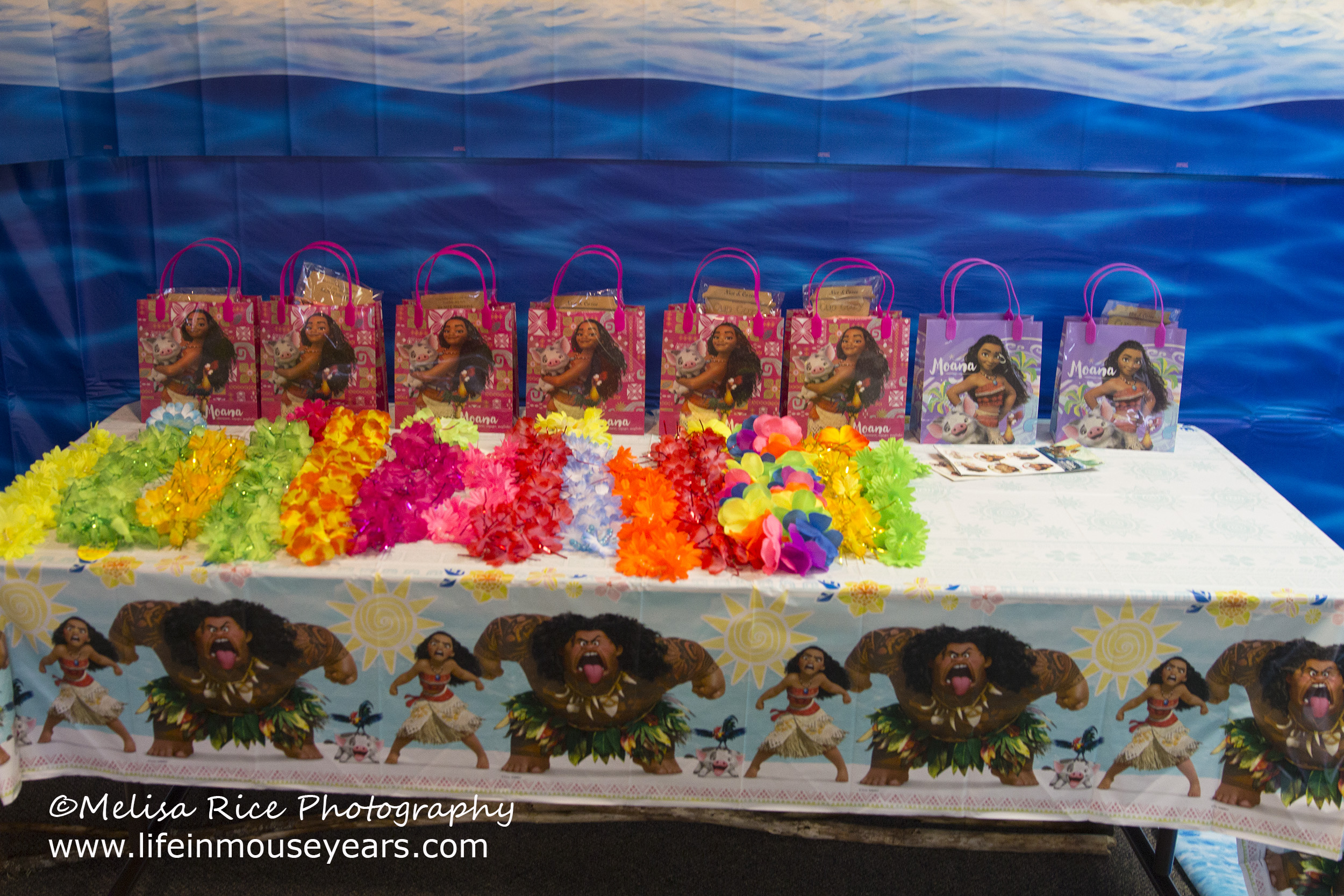 Moana Birthday Party Ideas Favor Bags