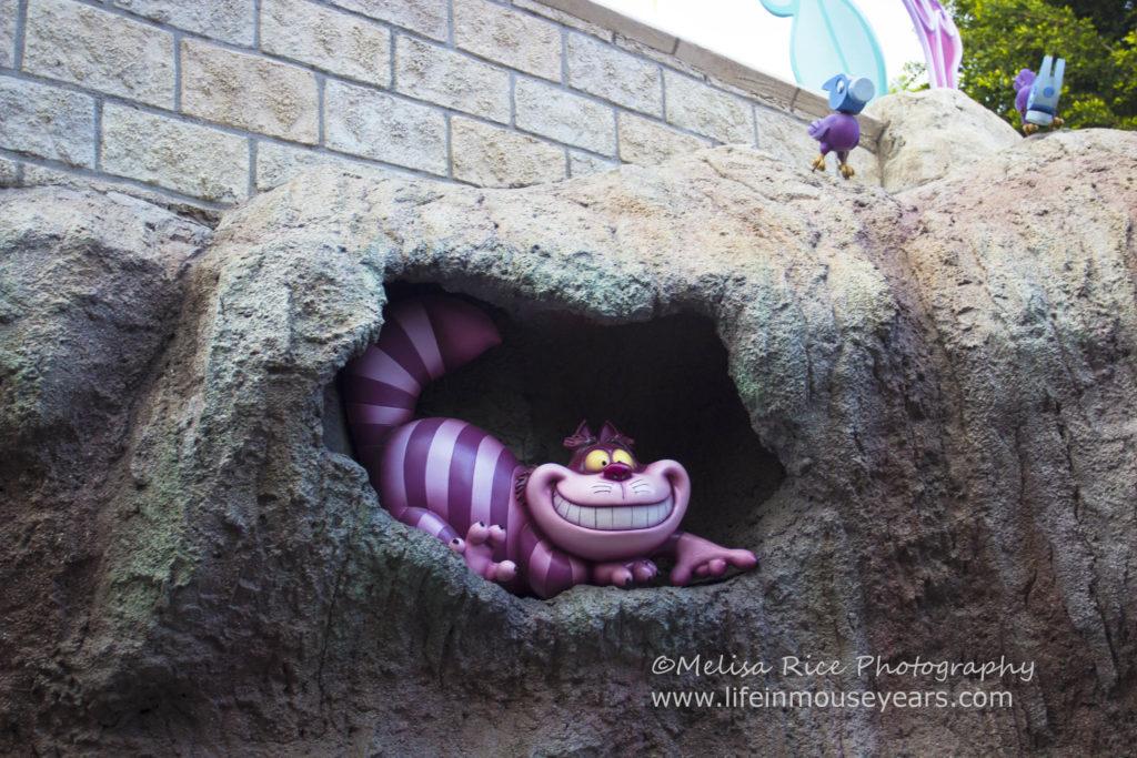 Alice in Wonderland Attraction