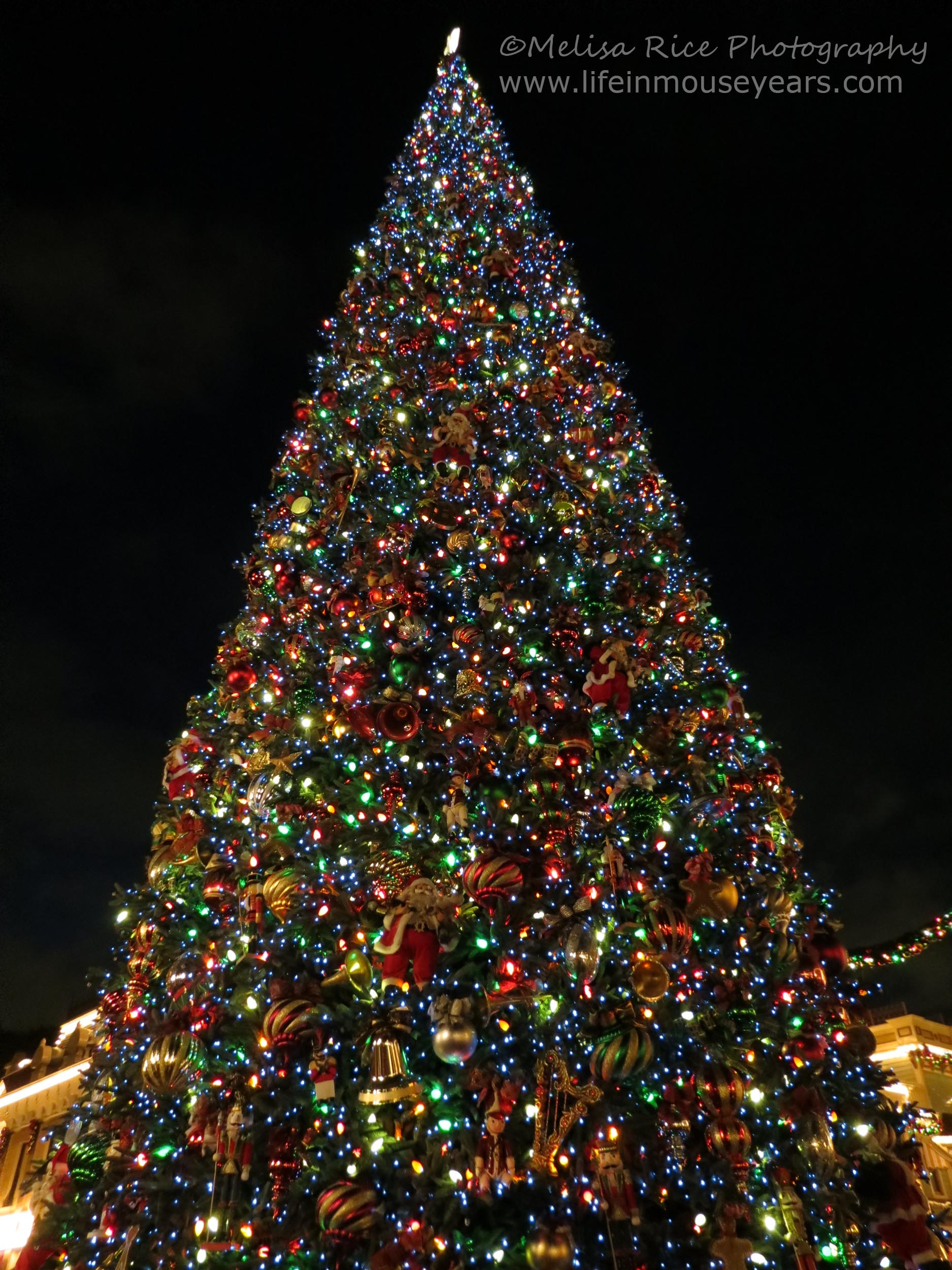 holiday time at disneyland life in mouse years disneyland california travel