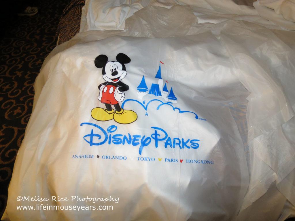 15 Best Items to Purchase Before Going to Disneyland. www.lifeinmouseyears.com #ponchos #disneyland #california #vacation #buybeforeyougo