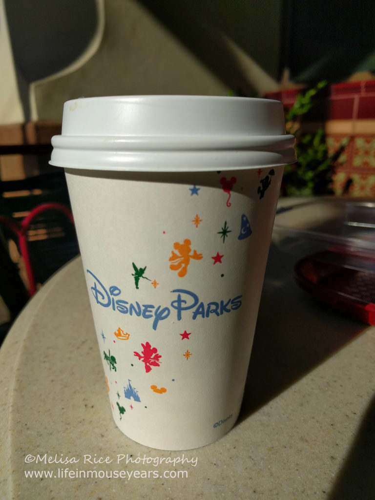 Top 10 Ways for Self-Care at Disneyland www.lifeinmouseyears.com #disneyland #selfcare #disney #california #peacefulplaces #disneyparks #lifeinmouseyears