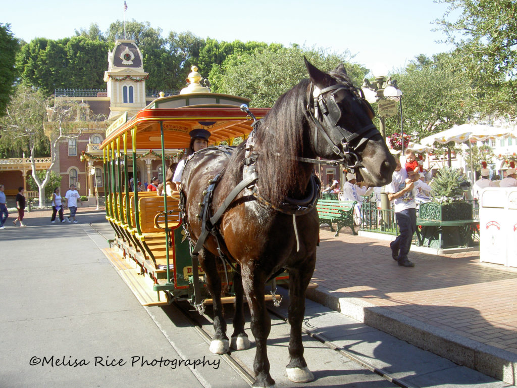 Things for Adults to do at Disneyland. Life in Mouse Years #disneyland #california #vacation #mainstreetusa