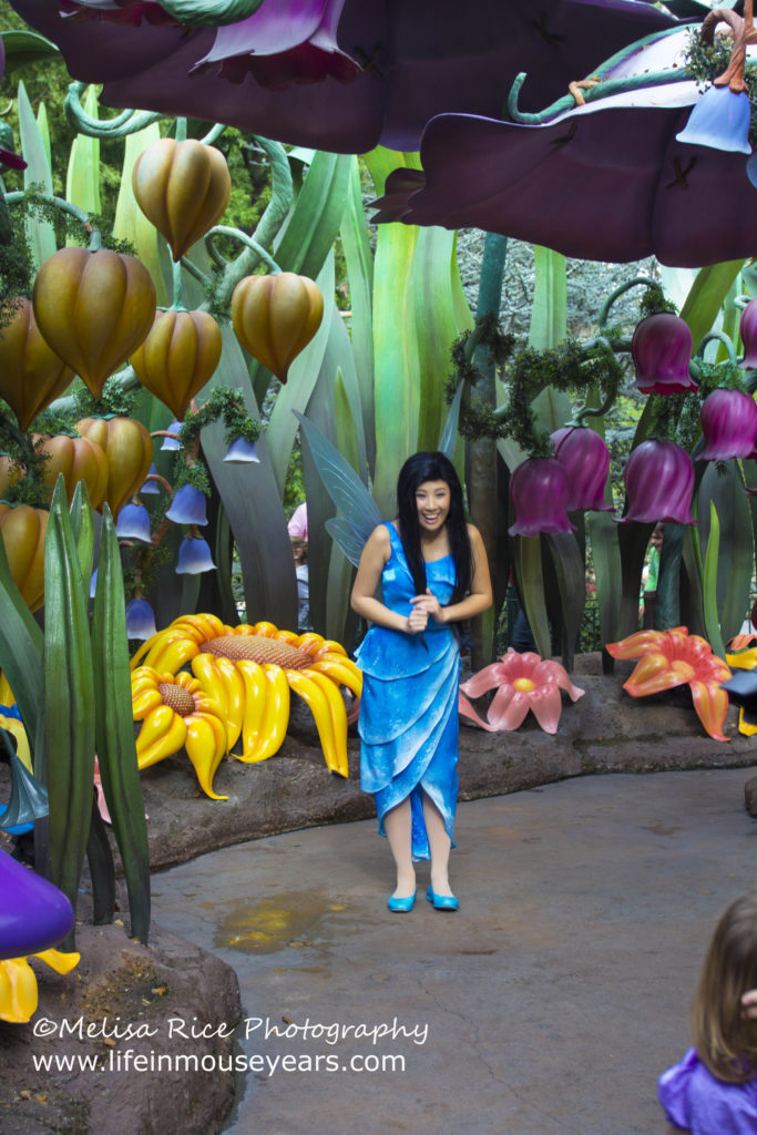 Meet Tinkerbell at Pixie Hollow in Disneyland.