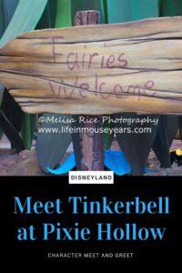 Meet Tinkerbell at Pixie Hollow in Disneyland www.lifeinmouseyears.com #tinkerbell #disneyland #disneyfairies