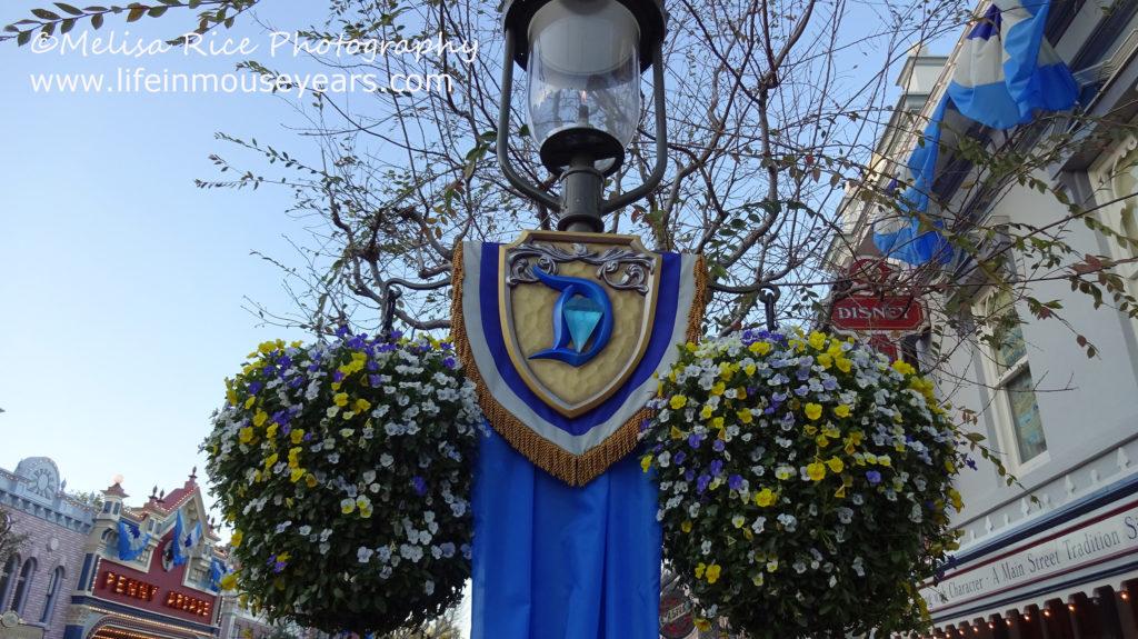 60th celebration hanging flower baskets.