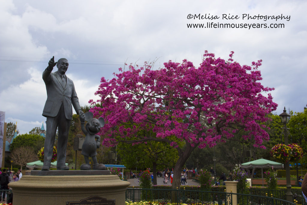 Partners statue in late February with the cherry blossom trees.