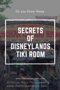 Secrets of Disneylands Tiki Room