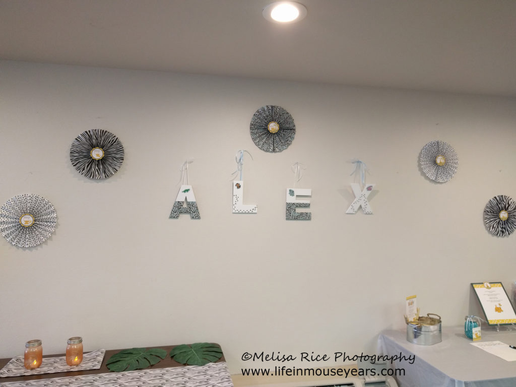 Lion King baby shower. Disney. Wall decorations.