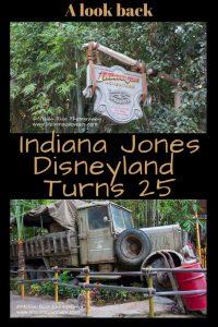 Indiana Jones Adventure www.lifeinmouseyears.com #lifeinmouseyears #disneyland #indianajonesadventure