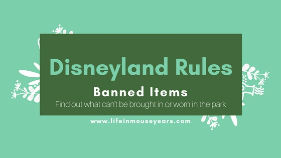 Disneyland Rules-Banned Items