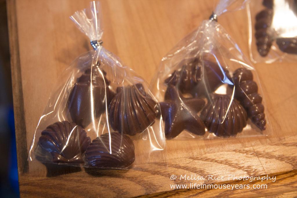 Seashell Chocolates Moana Party