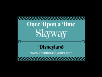 Once Upon a Time Skyway