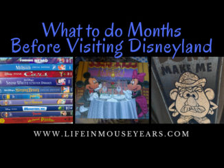 What to do Months before visiting Disneyland