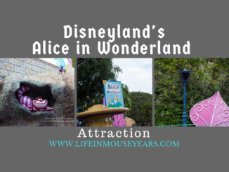 Disneyland's Alice in Wonderland Attraction