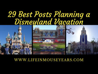 29 Best Posts Planning a Disneyland Vacation. www.lifeinmouseyears.com #disneyland #disney #disneylandafterdark #nighttimedisneyland #california #familyvacation