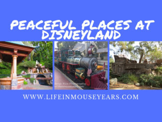 Peaceful Places at Disneyland www.lifeinmouseyears.com #disneyland #peacefulplaces #quietdisneyland #familyvacation #california #disney #disneylandrailroad #pixiehollow #hungrybearrestaurant #tomsawyerisland