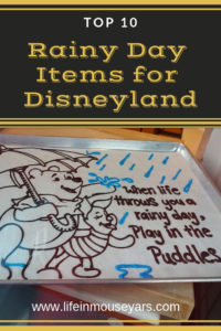 Top 10 Rainy Day Items for Disneyland www.lifeinmouseyears.com #lifeinmouseyears #disneyland #rainydaydisney #california #rainyday #disneyparks #disneylandresort