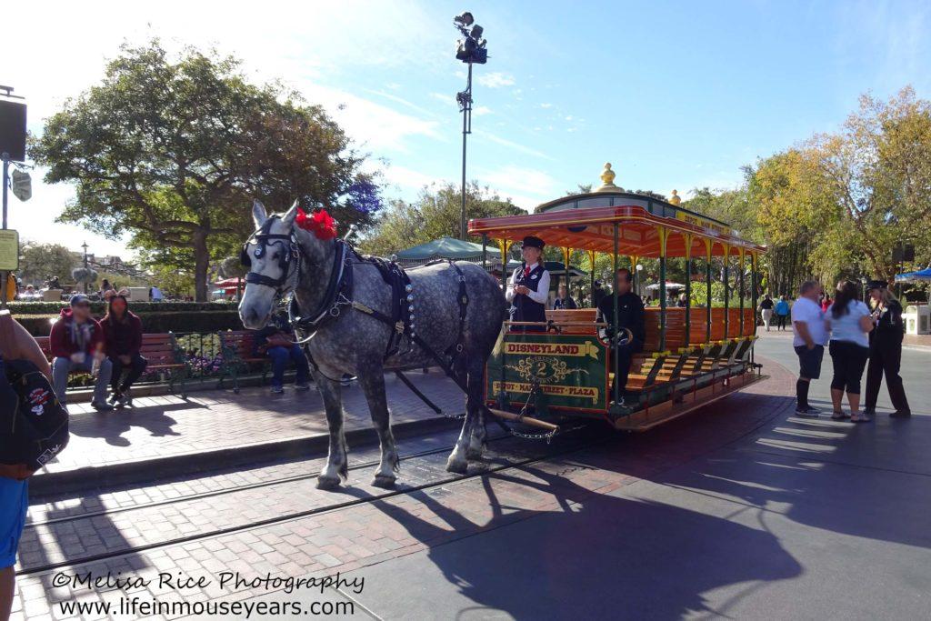 Disneyland Horse-Drawn Street Cars www.lifeinmouseyears.com #lifeinmouseyears #horsedrawnstreetcar #castmembers #disneyattractions #mainstreetusa